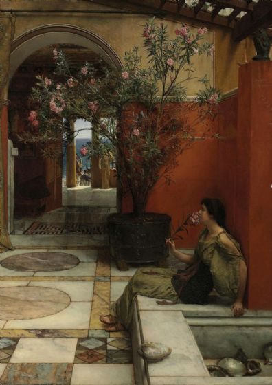 Alma-Tadema, Sir Lawrence: An Oleander. Fine Art Print/Poster. Sizes: A4/A3/A2/A1 (003808)